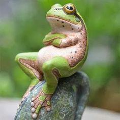 Foto de NATURE en Google+ Funny animals acting like people