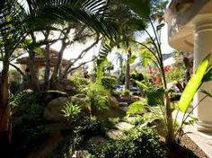 carribean landscaping - Google Search