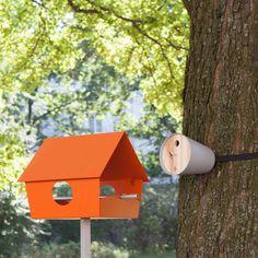 Modern Homes for Avian Friends
