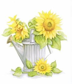 sunflowers-funflowers on Pinterest | 33 Pins