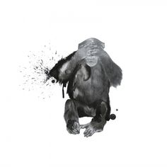 Chris Loco - Ego