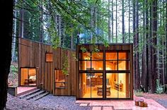 A Cabin in the Redwoods