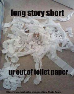 Long story short.