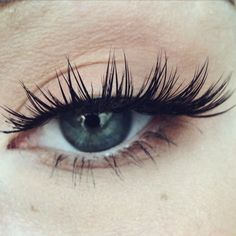 extreme lash close up. they're just so pretty #kokolashes in goddess
