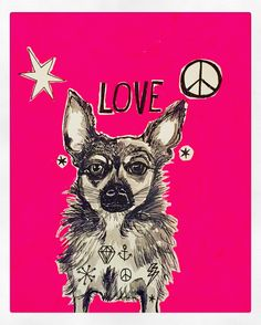 Cookie Chihuahua ink drawing by Lizzie Reakes