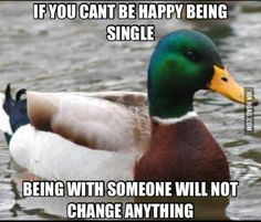 advice mallard on being single... duck's right!