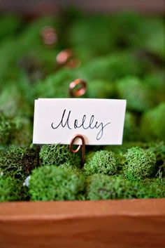 Love this setting for place cards