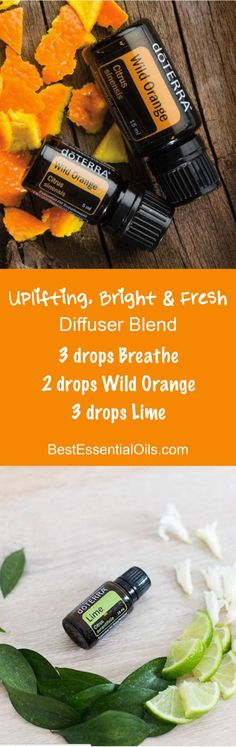 Learn how to become a dōTERRA WELLNESS Advocate or how to buy dōTERRA products as a Wholesale Member Uplifting, Bright Fresh doTERRA Diffuser Blend