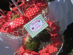 ladybug garden party via #babyshowerideas #ladybugparty #partyideas Baby shower ideas for boy or girl