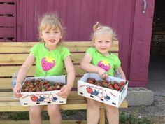 Sweet Stops: Awesome U-Pick Berry Farms Near Chicago