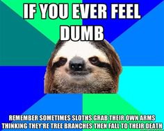 Whenever you feel as if you are to dumb to do anything...