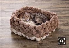 These Diy Chunky Knitted Beds Cat Cave Crochet Pattern, Diy Cat Bed, Pet Beds Diy, Crochet Animals, Crochet Pet, Arm Crocheting, Knitted Cat, Animal Room, Crochet Motifs