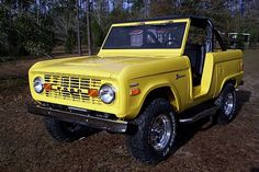 1977 Ford Bronco Pickup Truck