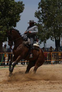 Doma Vaquera 2011
