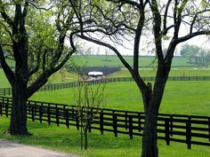 Black wood fence in beautiful horse country - Versailles, KY