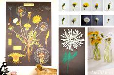Themenwoche: Vom Löwenzahn zur Pusteblume (inkl. Download) - Montessori Blog & Shop - MontiMinis Reggio, Planting Flowers, Homeschool, Blog, Table Decorations, Frame, Kids, Plants, Playrooms