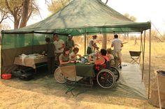 Esteetön safari Botswana Safari, Africa, Outdoor Decor