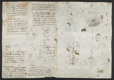 f. 230v, displayed as an open bifolium with f. 225: notes and calculations.