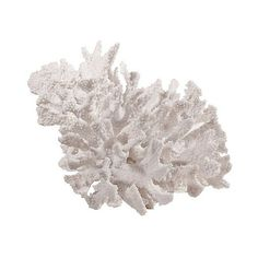 Decorative Coral Resin Figurine ($46) ❤ liked on Polyvore featuring home, home decor, white, coral home accessories, sea home decor, coral home decor, white figurines and ocean home decor