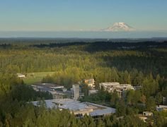 aerial view of the campus of evergreen state college in Olympia Washington,  how about this for a beautiful place to attend college?