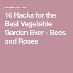16 Hacks for the Best Vegetable Garden Ever - Bees and Roses