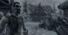 skymod-surv-frost