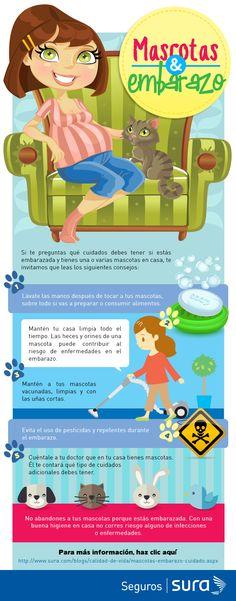 Lee el siguiente infográfico si te preguntas qué cuidados debes tener con tus macotas, en casa, si estás embarazada.