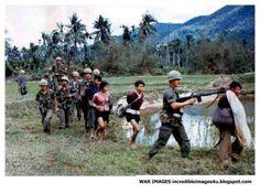 Suspected Vietcong are bound and escorted by U.S. Marines at gunpoint. - Vietnam War.