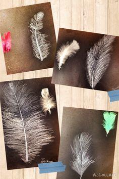 PARK ART SMARTIES: Gr. 4: Feather Studies