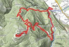 Breitenberg Wolfgangsee Sankt Gilgen, Österreich - BERGFEX - Wanderung - Tour Salzburger Land Berg, Tours, Circuit, Hiking