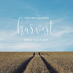 You will benefit from what you decide to raise and grow on your very own.