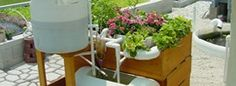 Great Small Aquaponics systems you can build yourself.