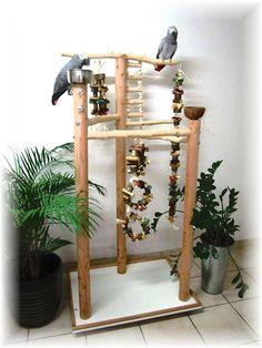 FREISITZ ROTBUCHENHOLZ, 165 cm Papageienspielzeug, mittl./große Papageienarten…
