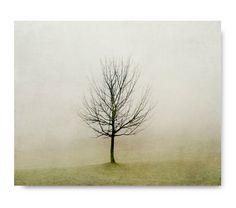 Minimalist Tree Photo, fog, foggy landscape, fine art photography, olive green, rustic home decor, living room decor, foggy, landscape via Etsy