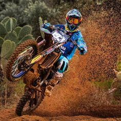 takes his Monster Energy to victory in at the Hawkstone International MX Source IG: yamaharacingcomofficial Ktm Dirt Bikes, Cool Dirt Bikes, Dirt Bike Gear, Motorcycle Dirt Bike, Moto Bike, Dirt Biking, Motorcycle Quotes, Best Dirt Bike, Motorcycle Touring