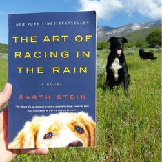 The Art of Racing in the Rain by Garth Stein   31 Of The Most Heartwarming Books You'll Ever Read
