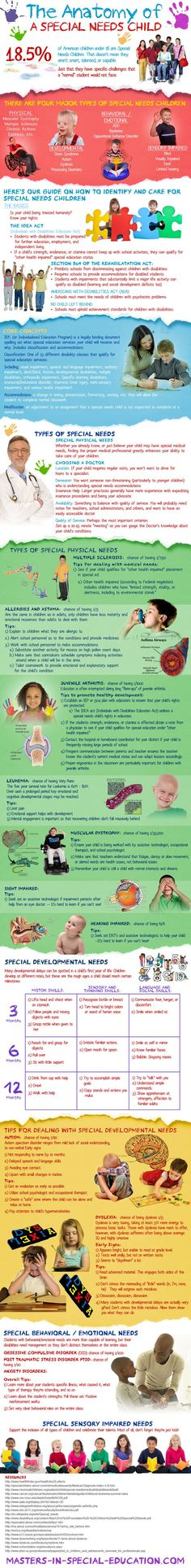 Anatomy of a Special Needs Child - Infographic with tips and information on raising kids with challenging needs.