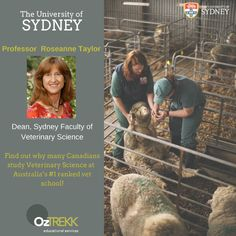 Sydney Faculty of Veterinary Science Dean Professor Rosanne Taylor will be visiting university campuses across Canada from October 11 – 14 to answer any questions you may have about studying at Sydney Veterinary School!