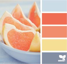 i love how they took their inspiration from a grapefruit! how cool! so clever! and the colors all work together and compliment each other perfectly.
