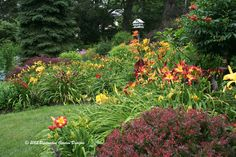 TAPESTRY GARDEN (HOT COLORS) AT DISTINCTIVEGARDENDESIGNS.COM