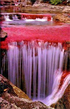 Cascada sobre el lecho del río Caño Cristales. Meta. Colombia