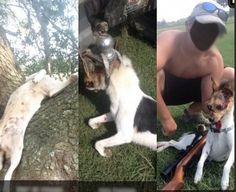 Petition | Prosecute Louisiana teen animal abuser! | English