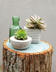 Make cement pots for your plants