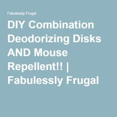 DIY Combination Deodorizing Disks AND Mouse Repellent!! | Fabulessly Frugal