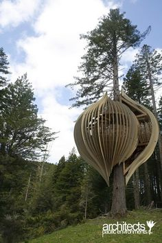 pacific environments treehouse - auckland