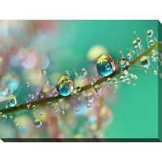 FramedArt.com Sharon Johnstone 'Smokey Rainbow Drops' Giclee Print Wall Art