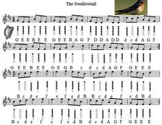 Image result for swallowtail jig tin whistle