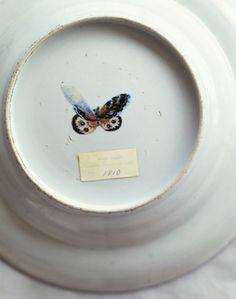 Photo by Lisa Hubbard Antique handpainted plate