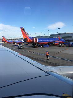 Southwest Airlines, Flight Attendant, Airplanes, Aviation, Birds, Steel, Planes, Aircraft, Bird