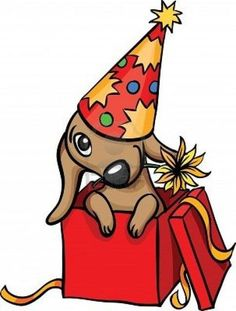 Birthday dachshund..
